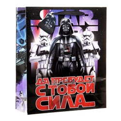 203-034-04-1 Подарочный пакет Да пребудет с тобой Сила!