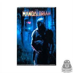 Обложка для паспорта The Mandalorian (051-036-09-1)