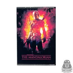 Обложка для паспорта Mandalorian (051-036-04-1)