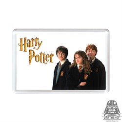 Магнит Harry Potter (young heroes) (401-200-05-2)