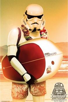 Постер Штурмовик с сёрфом - фото 6670