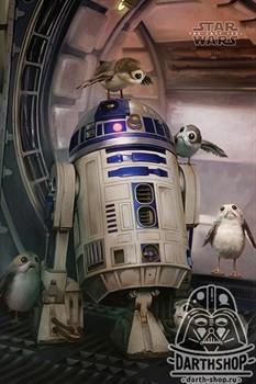 Постер R2-D2 & Porgs - фото 6696