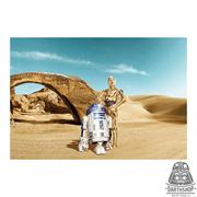 Фотообои STAR WARS Lost Droids